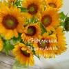 元気なヒマワリ13本と【お花のフレッシュ便】鮮度の秘密のまとめ