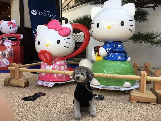 江ノ島キティは乙姫様!「はろうきてぃ茶寮」に行ってきました。